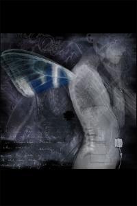 wingsofblue4x6