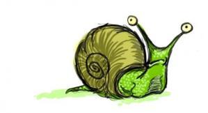 snaildoodle